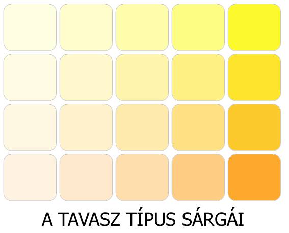 meleg színek a tavasz sárgái
